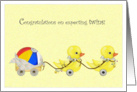 Double Ducks - Congratulations Expecting Twins card