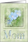 Mom - Happy Birthday card