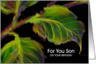 Son, Birthday Paper Greeting Card, 'Leaves' card