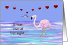 Flamingo Hummingbird Love Valentine card