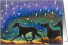Three greyhound whippet dogs starry night holiday card