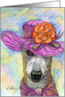 Greyhound whippet dog chuffed with new hat Card