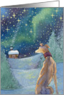 Greyhound dog gazes across the starlit snow towards the warmth of home card