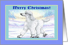 Merry Christmas. White poodle on ice skates. card
