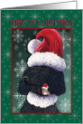 Season's Greetings, Poodle and Red Robin friends in Santa hats card