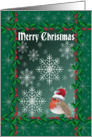 Merry Christmas, robin red breast in a Santa hat card