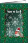 Peace on Earth Robin christmas card