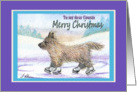 Merry Christmas Cousin, Cairn Terrier ice skating card