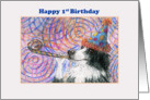 Happy 1st Birthday - Border Collie dog in a party hat card