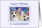 Happy 1st Birthday to a special Brother, Corgi dog birthday card