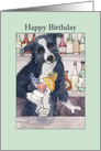 Happy Birthday, Border Collie dog holding a drink card