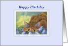 Happy Birthday, cat among blue flowers, birthday card