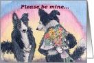 Border Collie, dog, flowers, please be mine, valentine, card