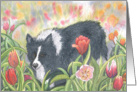 Tiptoe... Through the tulips... With me! card