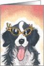 Happy Birthday, Hello Puppies! Dog card