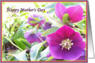 mother's day card flowers card