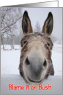 Donkey, Political Humor, Jackass in Snow, Blame it on Bush card