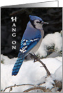 Encouragement, Bluejay Bird in Snow card