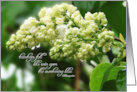 Sympathy, White Lilac in Rain, Teardrops Poem, for 'Her' card