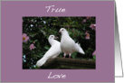 Doves True Love card