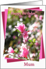 Mum Pink Flower Happy Birthday card