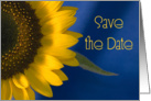 Wedding Save the Date Sunflower on Blue card