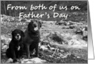 Happy Father's Day from both: two dogs card