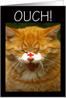 Get Well Soon - Broken Nose: cat card