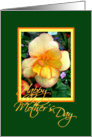 Yellow begonia card