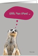 mon amour, french happy valentine's day card, meerkat card