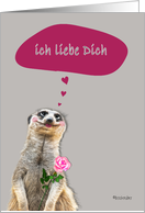 Ich liebe Dich , I love you in German, addressing male, cute meerkat card