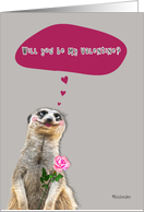 Will you be my Valentine? dreamy female meerkat holding rose card