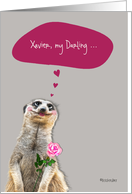 Happy Valentine's Day, customizable love & romance card, cute meerkat card