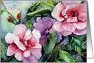 pink camellias card