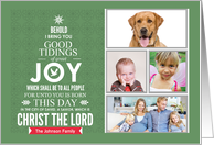 Photo Christian Christmas Card Behold Christ JOY card