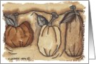 Greeting Card, Thanksgiving, Pumpkin, Card