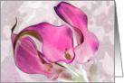 Watercolor Callas card
