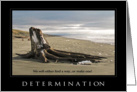 Inspirational quote with a piece of driftwood on the beach card