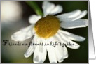Daisy Friendship Card - Blank card