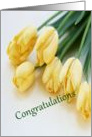 Congratulations - Graduate School Acceptance - Flowers card