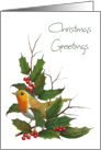 Christmas Greetings: Christian Message, English Robin, Holly, Berries card