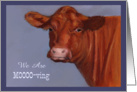 Moving Announcement: Red Cow in Oil Pastel, Mooo-ving, Humor card