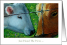 Just Heard The News, General Congratulations, Two Cows, Oil Pastel Art card