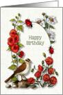 Happy Birthday, General, Nature Art, Bird, Flowers, Ladybugs card