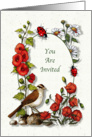 Invitation, General, Nature Art, Bird, Flowers, Ladybugs card