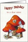Happy Birthday to a Dear Sister, Toadstools, Gnomes, Daisies, Art card