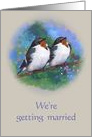 We're Getting Married: Songbird Couple with Blue Sky, Original Art card