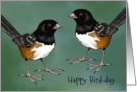 Birthday, General: Happy Bird-day, Humor, Pun, Birds card