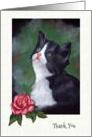 General Thank You: Kitten Looking Up, Rose, Original Pastel Art card