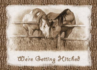 Were Getting Hitched: Western Wedding Invitation: Horses Greeting Card